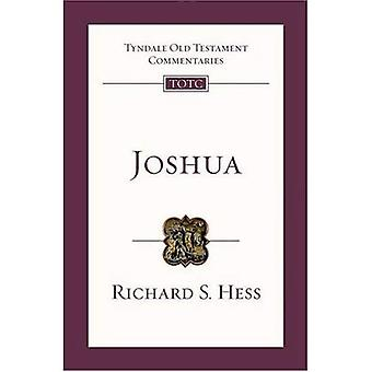 Joshua: Een introductie en enquête (Tyndale Oudtestamentische commentaren)