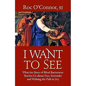 I Want to See: What the Story of Blind Bartimaeus Teaches Us about Fear, Surrender and Walking the Path to Joy