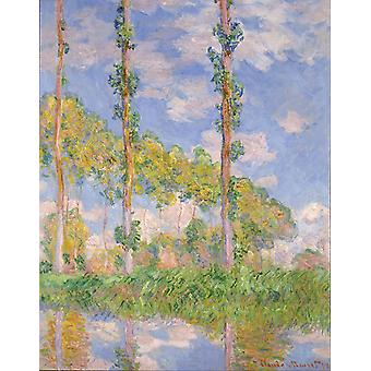 Claude Monet - Poplars in the Sun Poster Print Giclee
