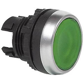 BACO BAL21CH20 L21CH20 grön