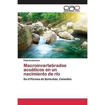 Macroinvertebrados acuticos en un nacimiento de ro by Castellanos Pablo