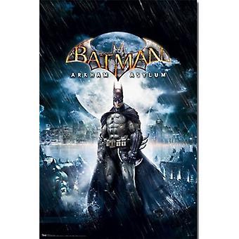 Batman - Arkham Asylum Poster Print