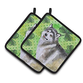 Alaskan Malamute St Patrick's Pair of Pot Holders