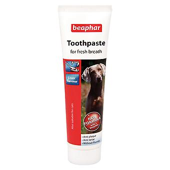 Beaphar Toothpaste for All Sizes of Dogs & Cats, Liver Flavour Anti-Plaque