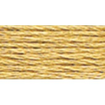 DMC 6-Strand Embroidery Cotton 100g Cone-Hazelnut Brown Light