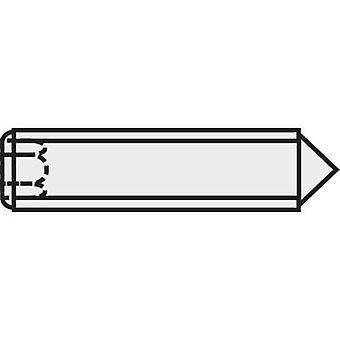 TOOLCRAFT 827334 Grub screw M3 5 mm Steel 20 pc(s)