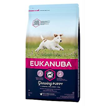 Eukanuba Puppy & Junior Small Breed (Dogs , Dog Food , Dry Food)