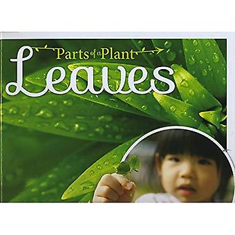 Leaves (Parts of a Plant)