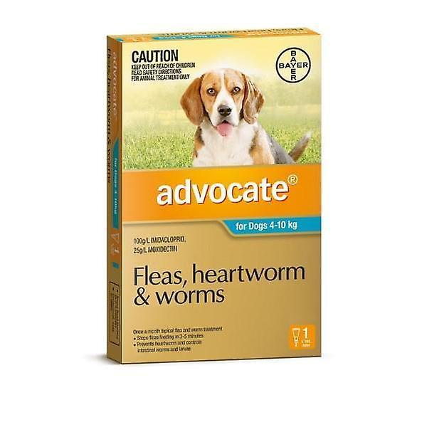 Advocaat 1 Pack Medium honden 4-10kg