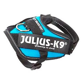 Julius K9 IDC Harness Aquamarine Size 1 (Dogs , Collars, Leads and Harnesses , Harnesses)