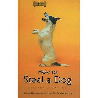 Cómo robar un perro