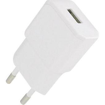 USB charger Mains socket HN Power HNP11-USBV2-WHITE Max. output current 2100 mA 1 x USB