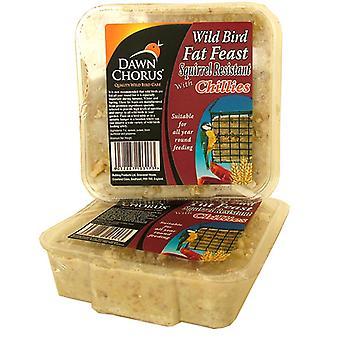 Dawn Chorus Fat Feast egern modstå (pakke med 12)
