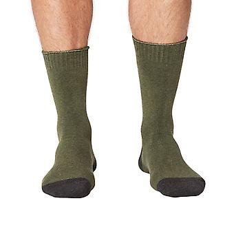 Forester thick men's organic cotton crew socks in forest | By Thought