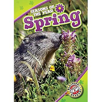 Spring (Seasons of the Year)