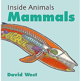 Insidan djur: Däggdjur (inuti djur)