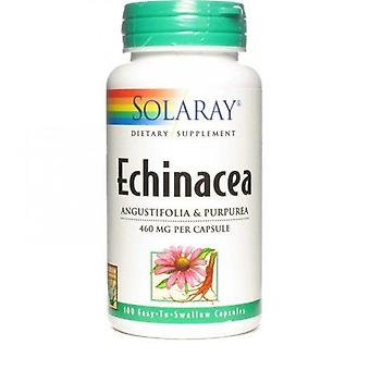 Solaray Echinacea Angustifolia purpurea 460 mg 100 Capsules