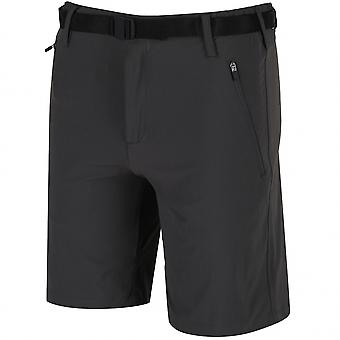 Regatta Xert Stretch Shorts II