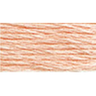 Dmc Six Strand Embroidery Cotton 8.7 Yards Very Light Apricot Lighter Than 3824 117 967