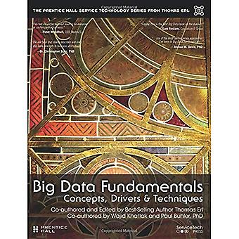 Big Data Fundamentals: Concepts, Drivers, and Techniques (Prentice Hall Service Technology Series from Thomas...