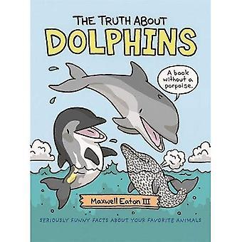 Sanningen om delfiner: allvarligt roliga fakta om ditt favorit djur