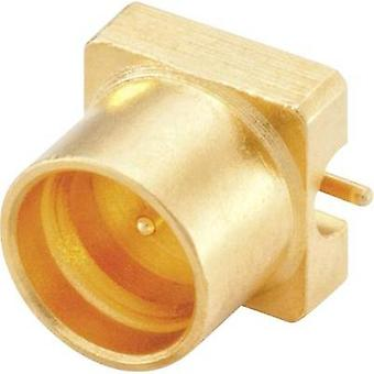 SMP connector Plug, vertical mount 50 Ω Rosenberger 19S102-40ML5 1 pc(s)