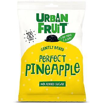 Städtischen Frucht Ananas Snack Pack