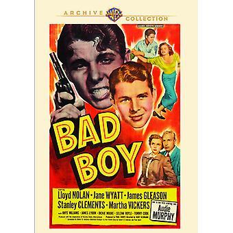Bad Boy [DVD] Stati Uniti importare