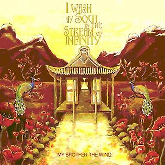 Min bror vind - jeg vaske min sjæl i Stream af Infinity [CD] USA importen