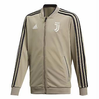 2018-2019 Juventus Adidas Polyester Jacket (Clay)