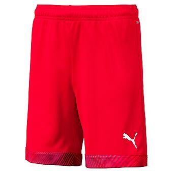 PUMA CUP s Jr Kinder Shorts Rot-Weiss