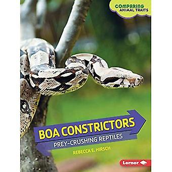 Boa constrictor: Beute-Brech Reptilien (tierische Eigenschaften im Vergleich)