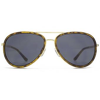 Animal Line Metal & Plastic Aviator Sunglasses In Gold