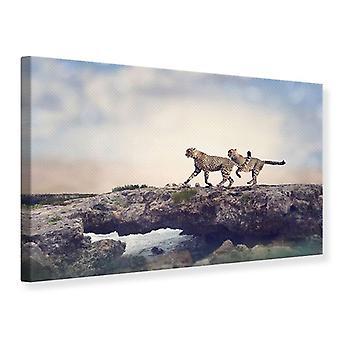 Canvas Print Two Cheetahs