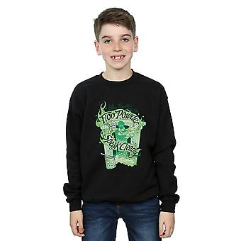 Harry Potter Boys Floo Powder Sweatshirt