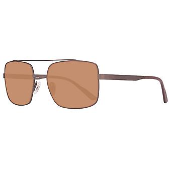 Helly Hansen mens rectangular Sunglasses brown