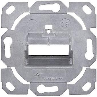 Network outlet Flush mount Insert Unequipped 2 ports