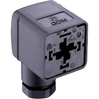 Valve Plug GDM 21 FA-L1Y Transparent GDM21FA-L1Y Number of pins:2 + PE Belden Content: 1 pc(s)