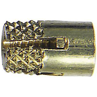 Bopla 59002810 GEWINDEBUCHSEN DODGE M3x6,5 Threaded Bushing Brass Brass