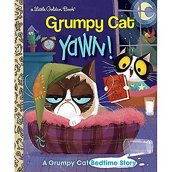 Yawn!: A Grumpy Cat Bedtime Story (Little Golden Book)