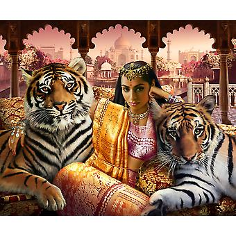 Indian princess Poster Print by Andrew Farley