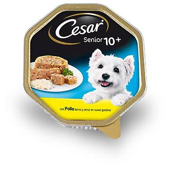 Cesar Cesar Senior (Dogs , Dog Food , Wet Food)
