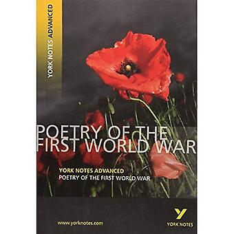 Poetry of the First World War (York Notes Advanced)