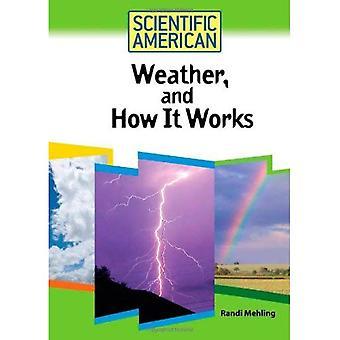 Wetter, und wie es funktioniert (Scientific American)