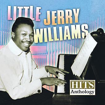 Liten Jerry Williams - treff Anthology [DVD] USA importere