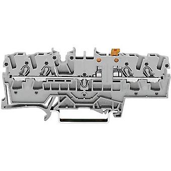 N terminal 5.20 mm Pull spring Configuration: L Grey