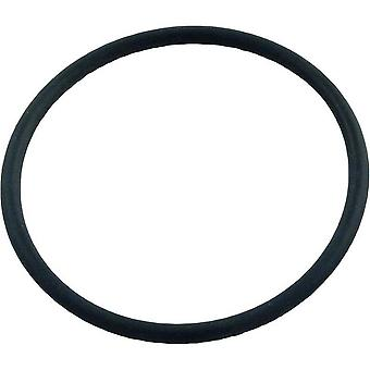 Pentair PacFab 191517 Center Pipe O-Ring for Star Polymeric Filter