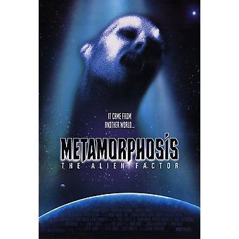 Metamorphosis The Alien Factor Movie Poster (11 x 17)