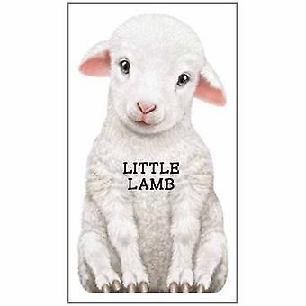 Petit agneau - Look at Me par L. Rigo - livre 9780764164279