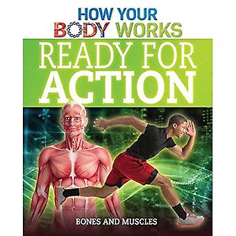 Ready for Action: Bones and Muscles (How Your Body Works)